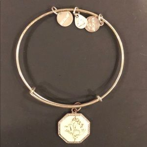 Alex and Ani bracelet in silver